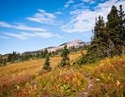 Trail Maintenance Day